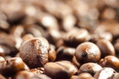 фасоли предпосылки закрывают текстуру кофе вверх Стоковая Фотография RF