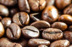 фасоли предпосылки закрывают текстуру кофе вверх Стоковая Фотография