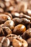 фасоли предпосылки закрывают текстуру кофе вверх Стоковые Изображения