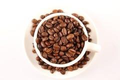 Фасоли чашки кофе Стоковое Изображение