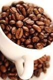 Фасоли чашки кофе Стоковая Фотография RF