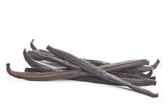 Стручок ванили стоковая фотография rf