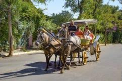 Фаэтон Buyukada, езда экипажа лошади кучера Стоковые Изображения
