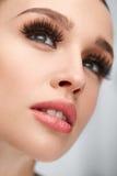 фальшивка ресниц Красивая женщина с стороной состава и красоты Стоковые Фото