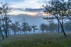 18, февраль Туман 2017 Dalat- над сосновым лесом на предпосылке восхода солнца и beautyful облако в Dalat- Lamdong, Вьетнаме Стоковое Изображение RF