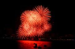 Феиэрверки в ночном небе Стоковое Изображение RF