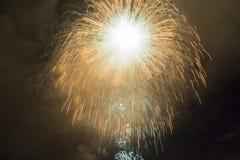 Феиэрверки в ночном небе стоковые изображения rf