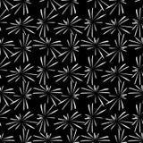 феиэрверки предпосылки черные Стоковые Фотографии RF