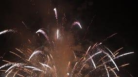 Фейерверки взрывая в ночном небе акции видеоматериалы
