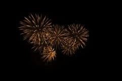 Фейерверки в ноче Стоковое Изображение