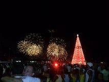 Фейерверки и рождественская елка Стоковая Фотография