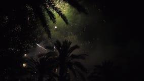 Фейерверки множественные феиэрверк Красочная ноча праздника atn фейерверков сток-видео
