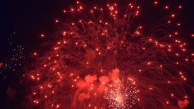 Фейерверки ночи красного цвета видеоматериал