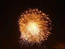 Фейерверки освещают вверх небо с ослеплять дисплеем стоковая фотография