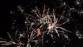 Фейерверки торжества Нового Года красочные Фейерверк накалять, пестротканых и искры на небе к ночь Фейерверки показывают в сток-видео