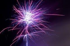 Фейерверки - фиолетовый помох Стоковые Фотографии RF