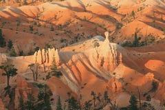 ферзи сада каньона bryce Стоковые Изображения