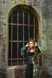 Ферзь имбиря около замка стоковая фотография