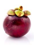 Ферзь мангустанов тайских плодоовощей Зрелый изолят плодоовощей мангустана Стоковые Изображения