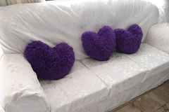 Ферзь пурпурных сердец в вашей живущей комнате! стоковые изображения rf