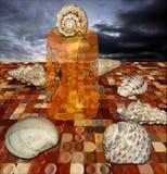 Ферзь раковины на ее троне Стоковое Изображение RF