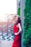 Ферзь снега в красном цвете Женщина зимы в кроне в красных платье и красном цвете стоковые изображения