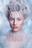 Ферзь снега Портрет девушки фантазии Портрет феи зимы Молодая женщина с творческим серебряным художническим составом Портрет зимы Стоковое Изображение