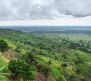 ферзь Уганда национального парка elizabeth Стоковое Изображение RF