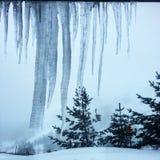 Ферзь льда Стоковая Фотография
