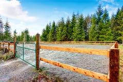 Ферма бортовой лошади страны с деревянной загородкой стоковые фотографии rf