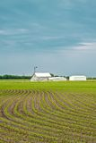 Ферма весны Стоковая Фотография RF