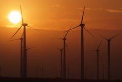 Ферма ветра во время захода солнца Стоковое Фото