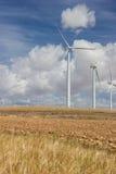Ферма ветра Стоковое Изображение RF