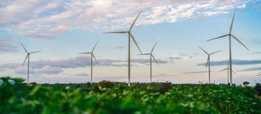 Ферма ветротурбины, концепция энергии ветра Стоковое Изображение RF