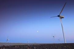 Ферма ветротурбины с голубым небом Стоковое Изображение