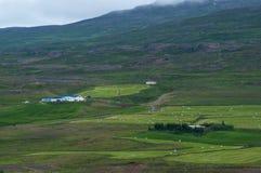 Ферма в северной Исландии Стоковое Изображение RF
