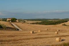 Ферма в Тоскане стоковая фотография
