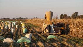 Ферма в Potchefstroom, Южной Африке стоковая фотография rf