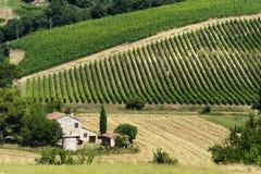Ферма в Umbria Стоковое Изображение
