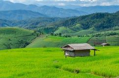 Ферма горы Стоковые Изображения