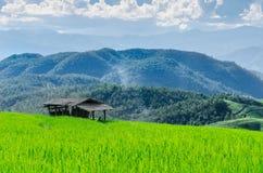 Ферма горы Стоковые Фотографии RF