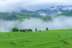 Ферма горы Стоковые Изображения RF