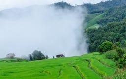 Ферма горы Стоковое Изображение RF