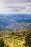 Ферма 3 горы Стоковое Изображение RF