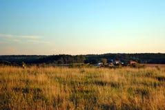 ферма Джерси новый Стоковые Фотографии RF