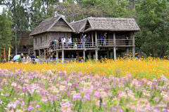 Ферма Джима Томпсона, Таиланд Стоковые Изображения RF