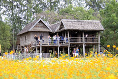 Ферма Джима Томпсона, Таиланд Стоковое фото RF