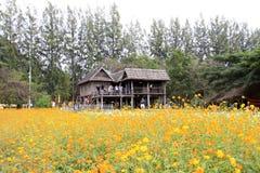 Ферма Джима Томпсона, Таиланд Стоковая Фотография RF