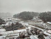 Ферма зимы стоковые фото
