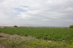 Ферма и огорода и парники Стоковое фото RF